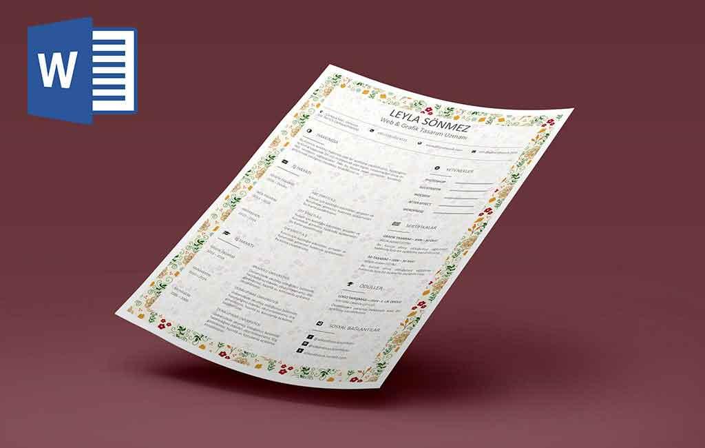 0102061101-Bayanlar için mükemmel CV tasarımı
