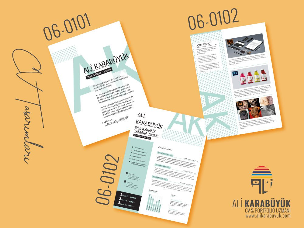 06 Nolu CV Tasarımı